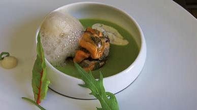 Gaspacho de concombre aux huitres, moules de la baie du mont st michel en pickles