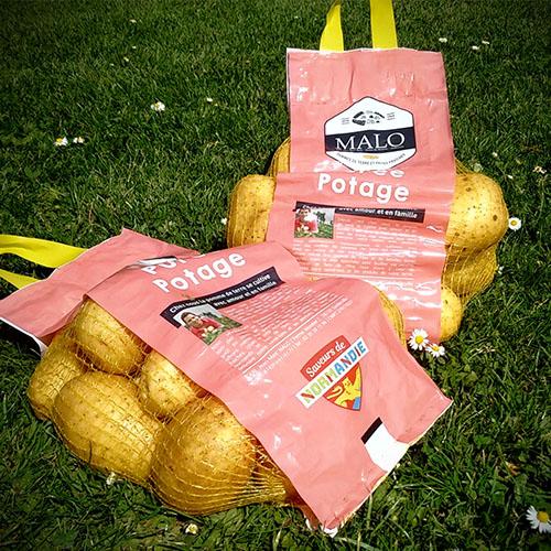Pomme de terre : frites – purée – potage