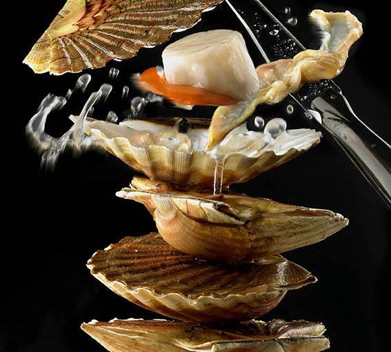 Saint-Jacques de Normandie et maki de homard